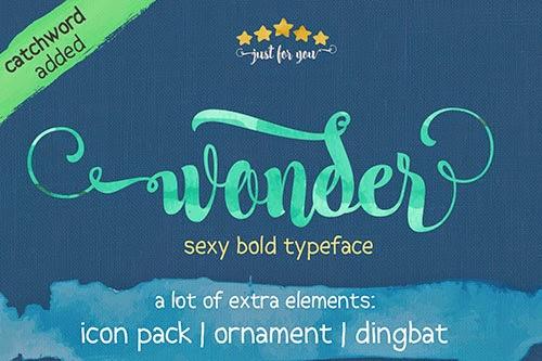 nice-wonder-script-font