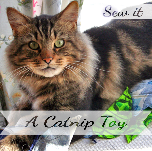 Sew yourself a Catnip toy