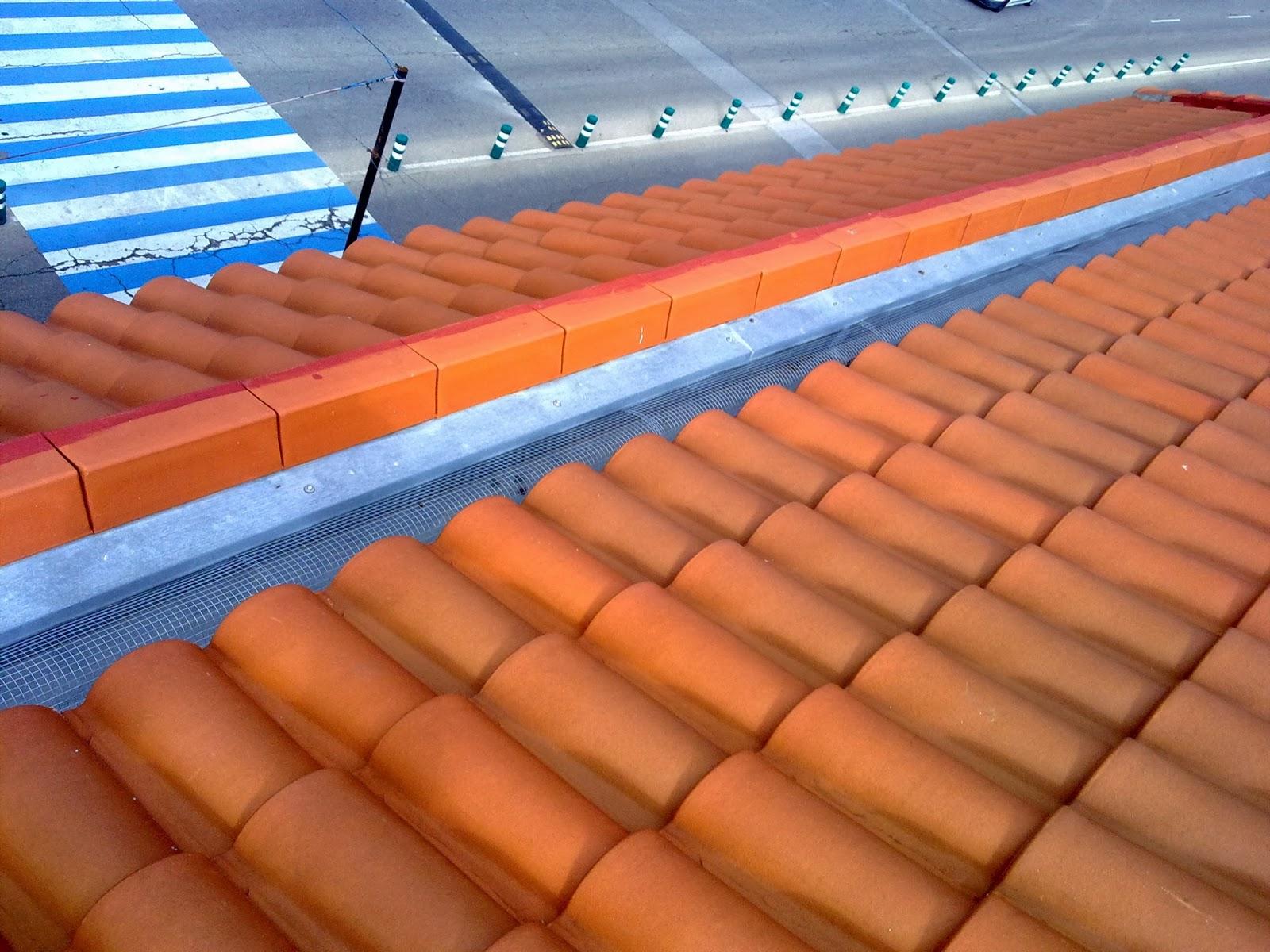 Limpieza de canalones de edificios y comunidades empresa trabajos verticales madrid msg - Fotos de canalones ...