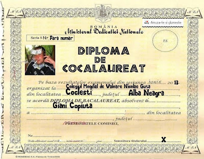 diploma pentru cei carora nu le place scoala