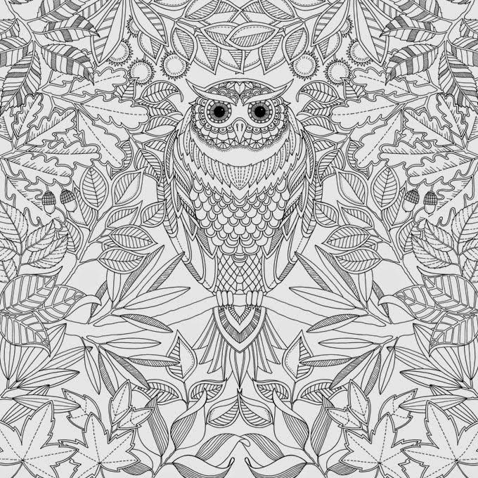 coruja tricoteira livros adultos para colorir reduzem o estresse e