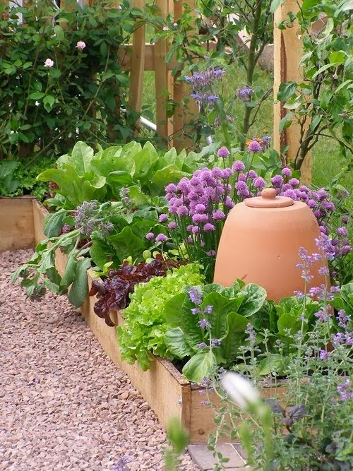 Raised bed gardening for Beautiful raised bed vegetable gardens