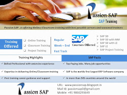 SAP SD DEMO LINK