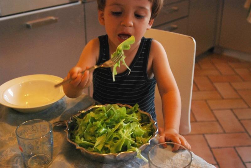 mangiare insalata da taglio coltivata in vaso