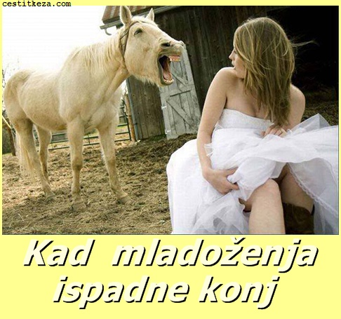 kad mladoženja ispadne konj smiješne slike
