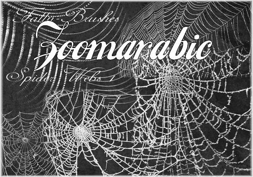 Download Spider Web Brushes For Photoshop