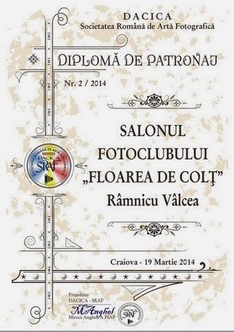 DIPLOMA DE PATRONAJ PENTRU SALONUL DE LA CRAIOVA