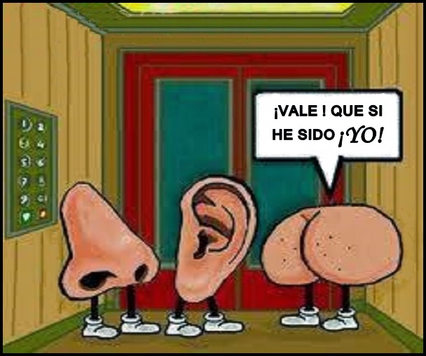 La naris la oreja y el culo en un ascensor.