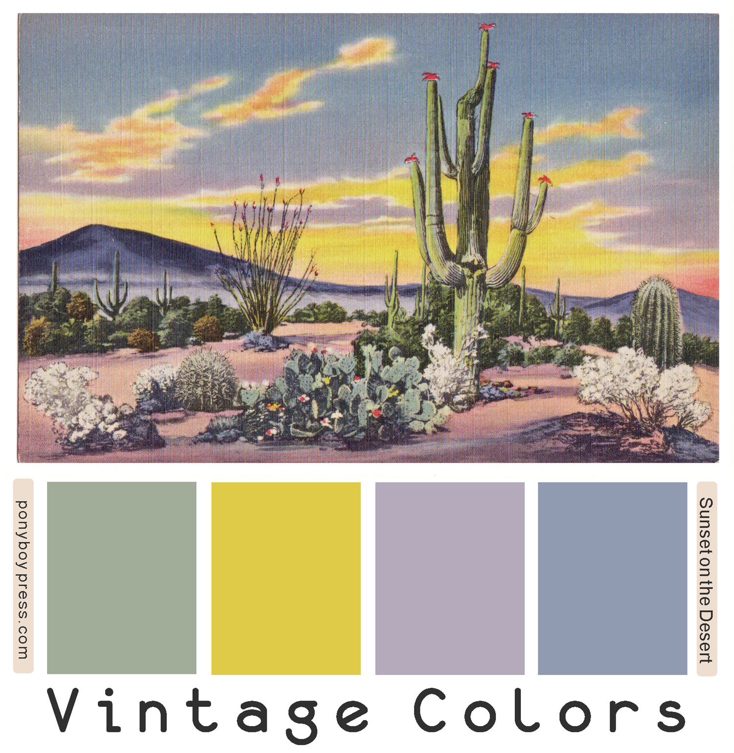 vintage color palette sunset on the desert desert color palette