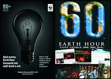 SAINT GEORGE, EARTH HOUR