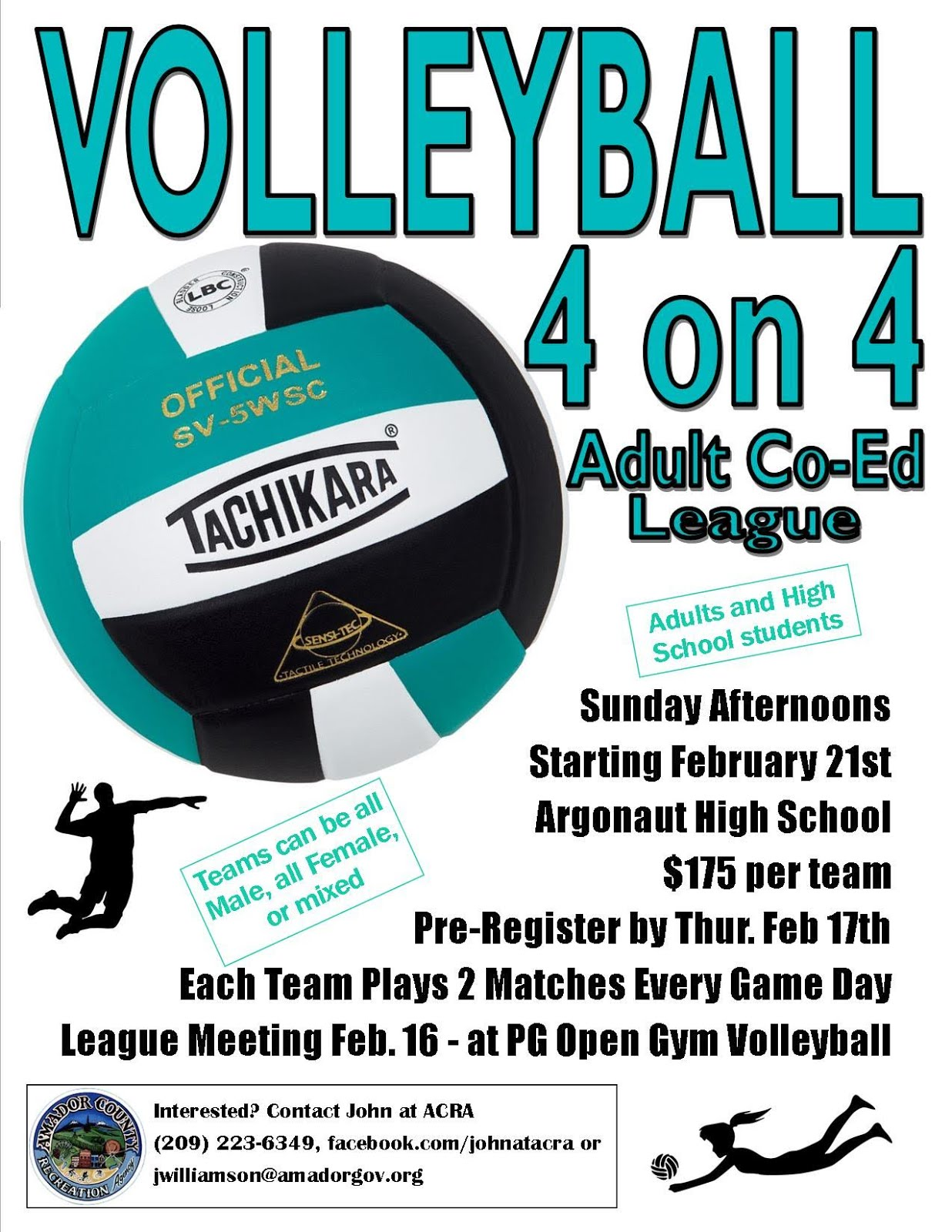 Volleyball 4 on 4 - League Meeting Feb 16