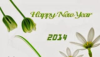 صور راس السنة 2014 الميلادية