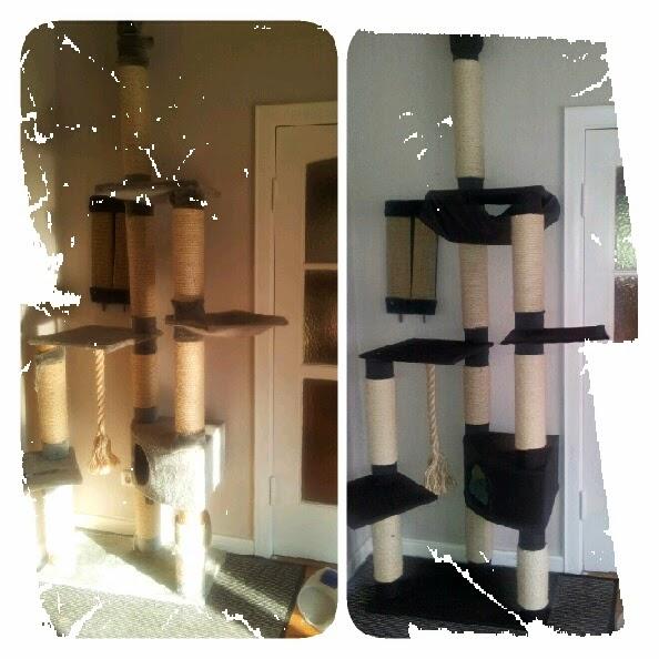 geschichtenzettelkasten schneiderlein das kratzbaum makeover. Black Bedroom Furniture Sets. Home Design Ideas