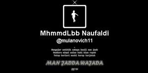 Header Twitter @mulanovich11