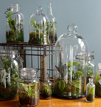 Vivarium Plans http://3businessideas.blogspot.com/2011/11/terrarium-construction.html