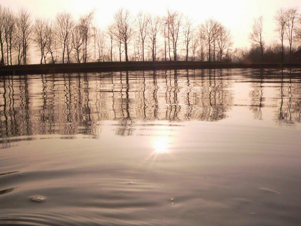 Wasser Spiegelung Bäume Frühling Ruhrgebiet