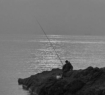pesca all' orata_ bolognese