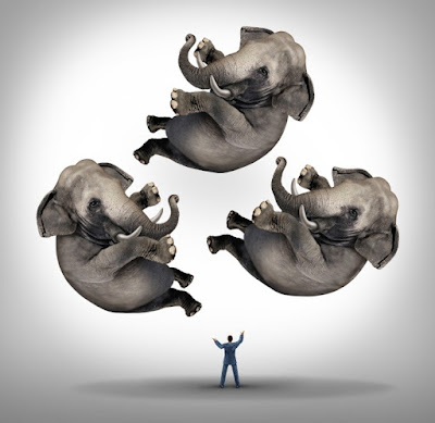 Leadership and What to Do When There Is an Elephant in the Room