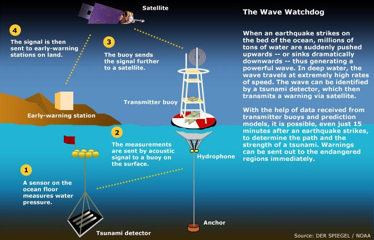 Jovana S Science Blog Tsunami