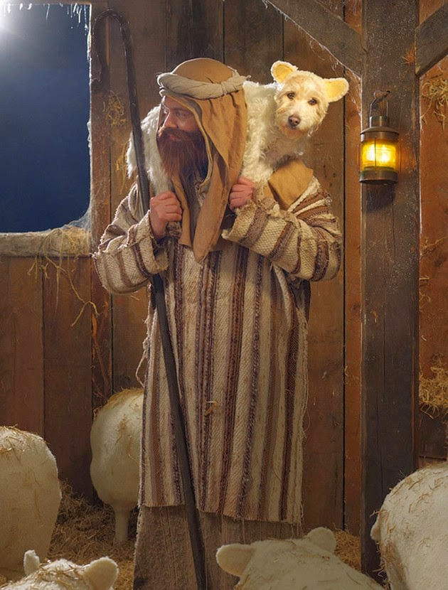 christmas dog peter thorpe holiday cards-2
