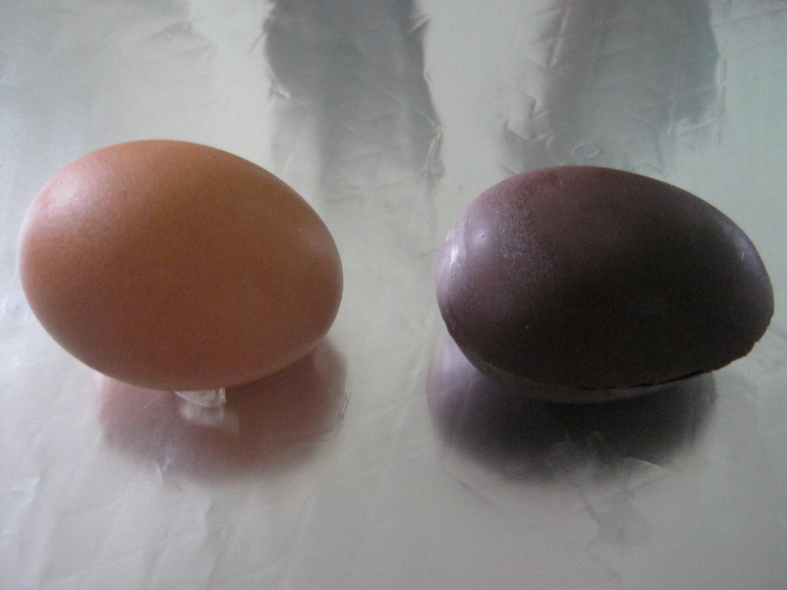Coklat Telur