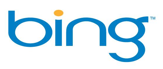 The Bing - New Among The Big Search Engines