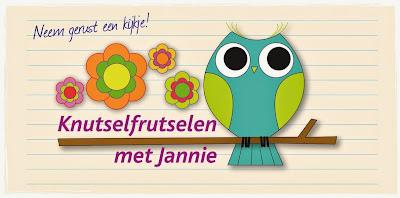 <center>Knutselfrutselen met Jannie</center>