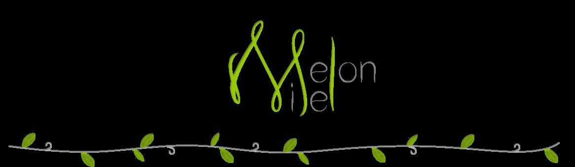 MelonMiel | Blog beauté et lifestyle au naturel