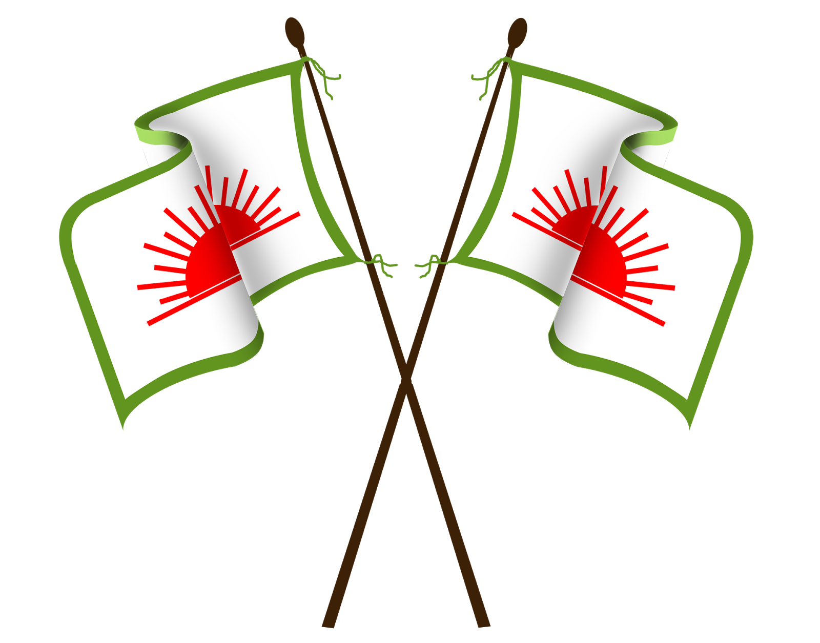pdp kerala flage saleem design