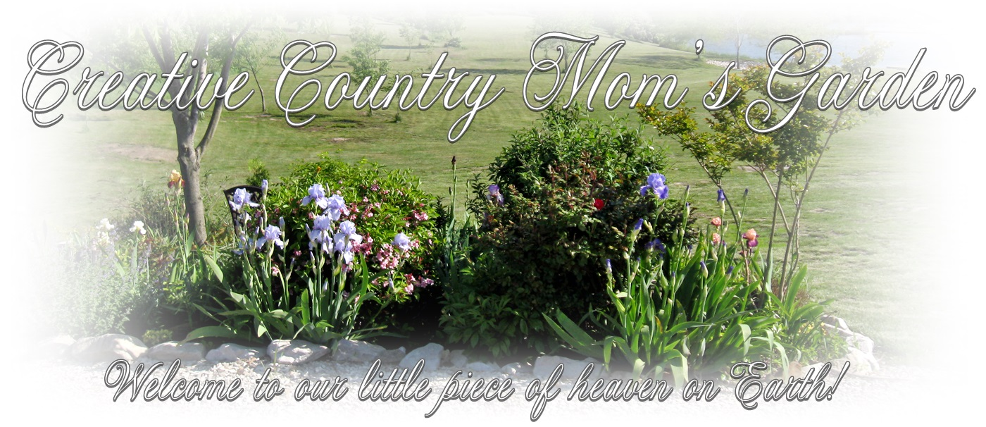 Creative Country Mom&#39;s Garden
