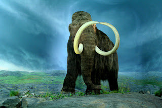Woolly Mammoth Wallpaper