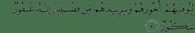 Surat Al-Fathir Ayat 30