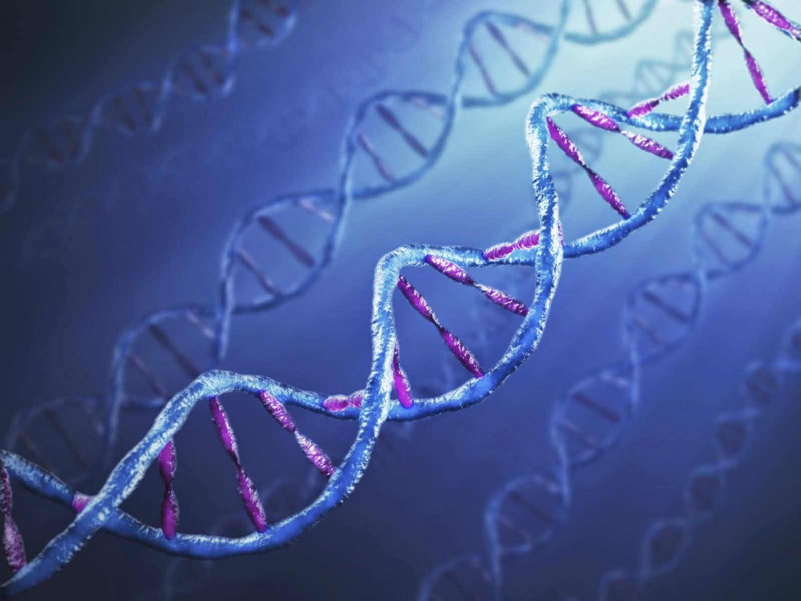 DNA (Deoxyribo Nucleic Acid)- Structure of DNA | MEDICAL TODAY