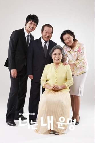 sœurs de cendrillon drama korea you are my destiny 2008