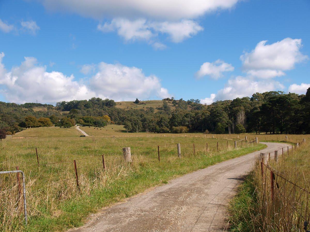 Bowral - Southern Highland (sydney) 秋天 - 圖大25p