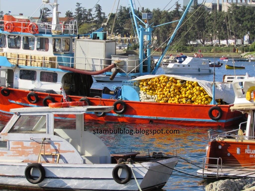 Корабли в Тузле