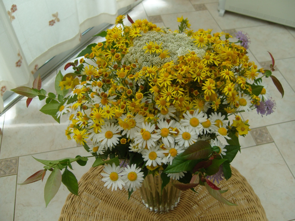 artiste en herbes bouquet de fleurs sauvages. Black Bedroom Furniture Sets. Home Design Ideas