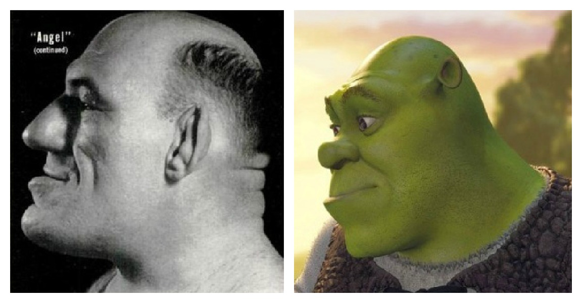 inspired from Maurice  Maurice Tillet Shrek