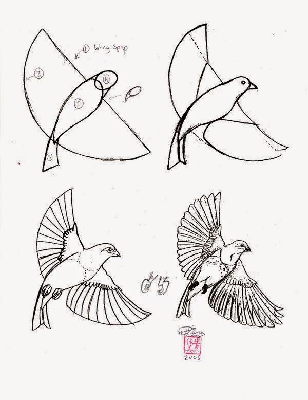 Le coin des enfants apprendre dessiner un oiseau - Comment dessiner une colombe ...