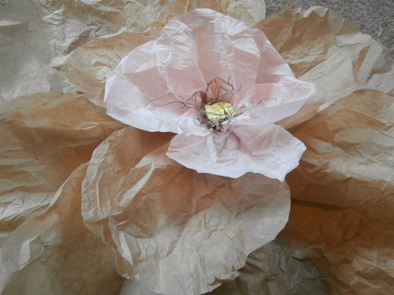 Proverbs 31 Living Big Tissue Paper Flowers A Fun Way To Decorate