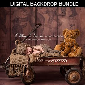 Digital Backdrop Bundle