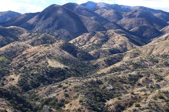 Hunting%2Bfor%2BCoues%2BWhitetail%2Bin%2BMexico%2Bwith%2Bguides%2BJay%2BScott%2Band%2BDarr%2BColburn%2B5.JPG