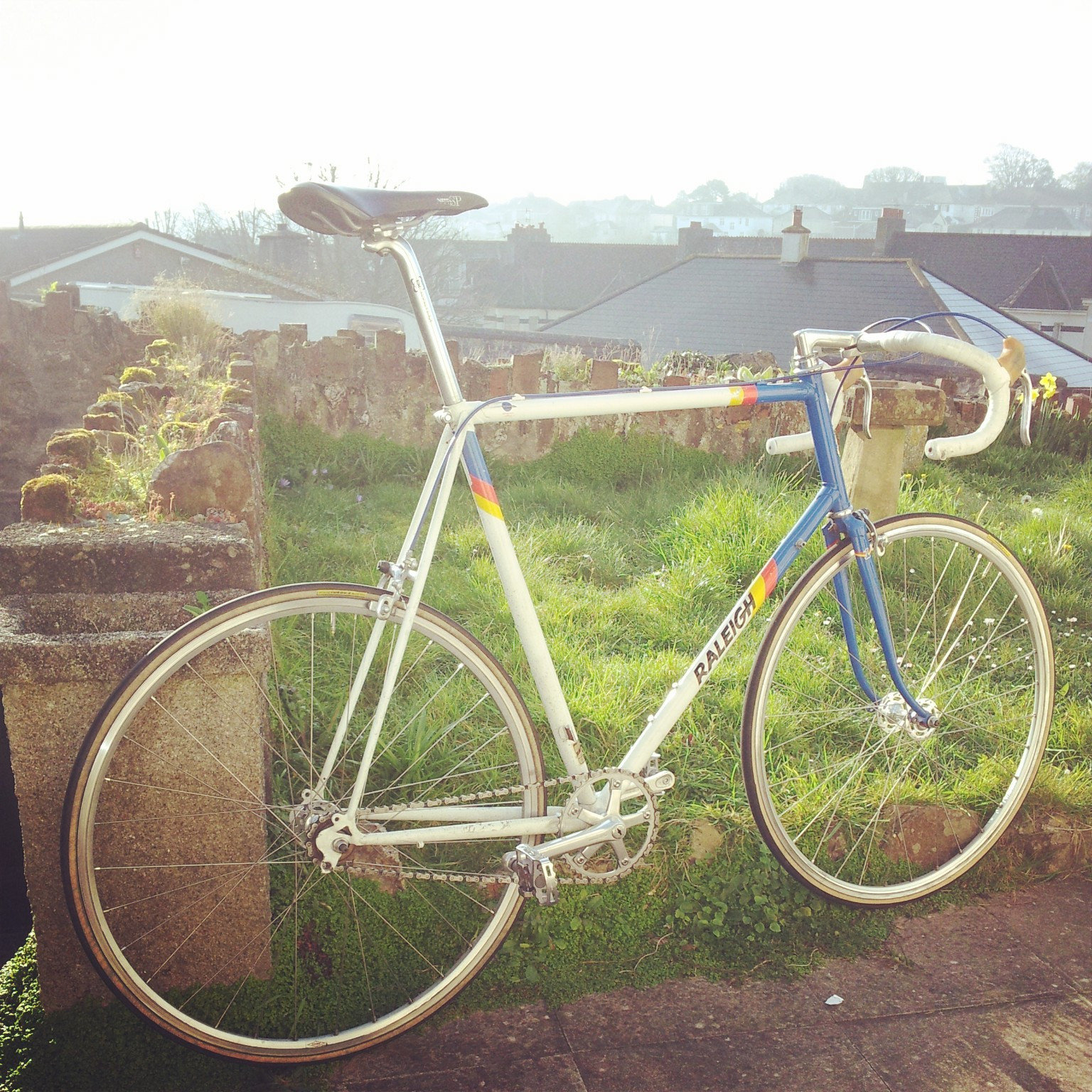 vintage raleigh singlespeed fixie conversion