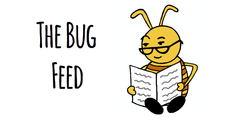 The Bug Feed