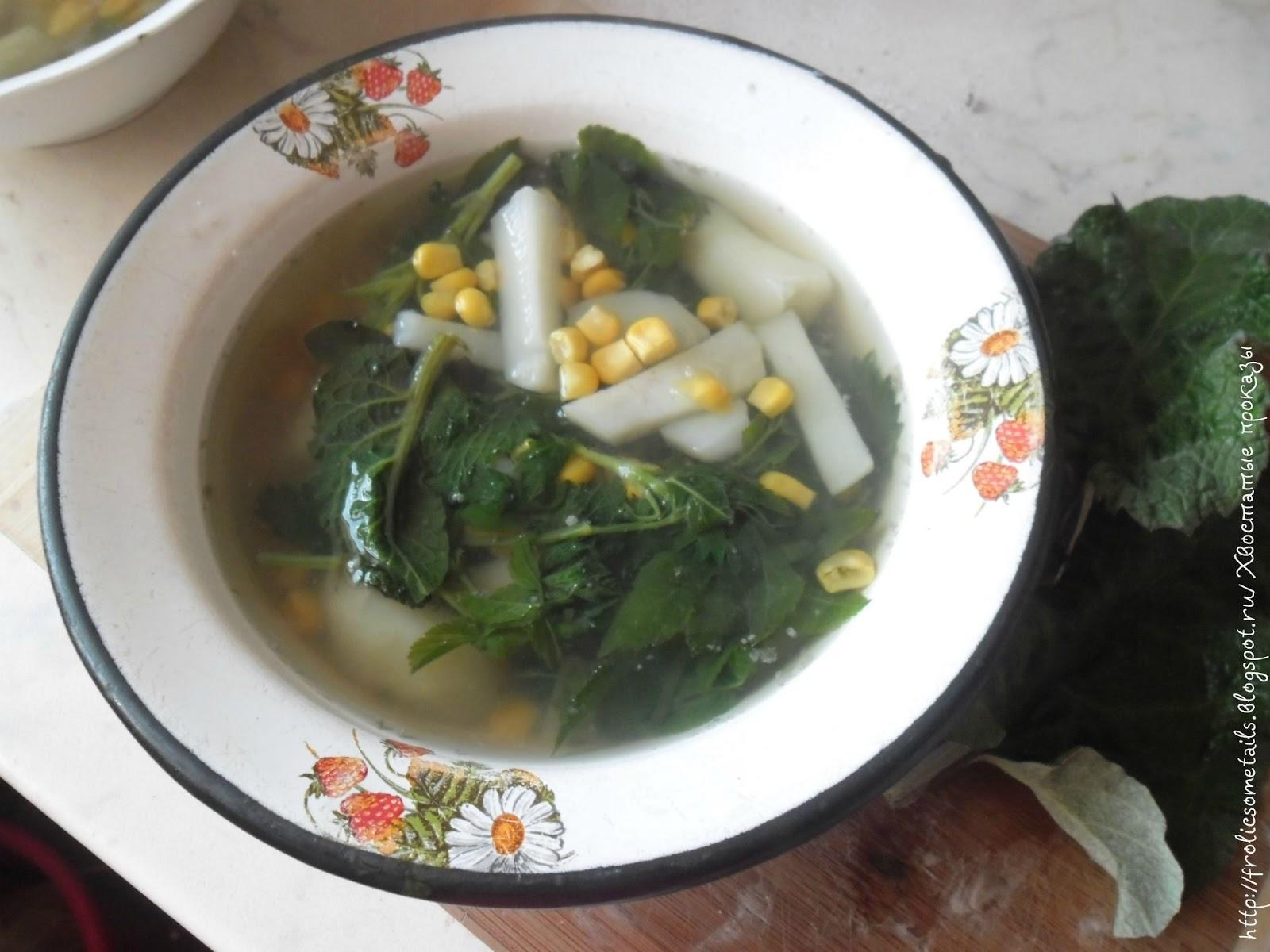 суп из дикоросов