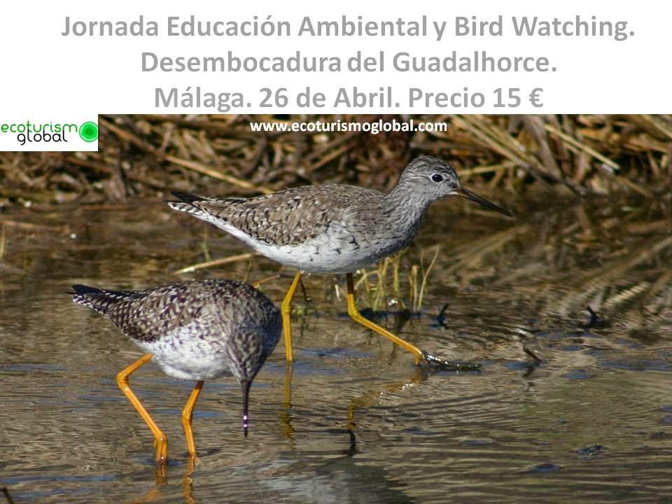 http://ecoturismoglobal.com/Ruta-educativa-Paraje-natural-Guadalhorce-MALAGA