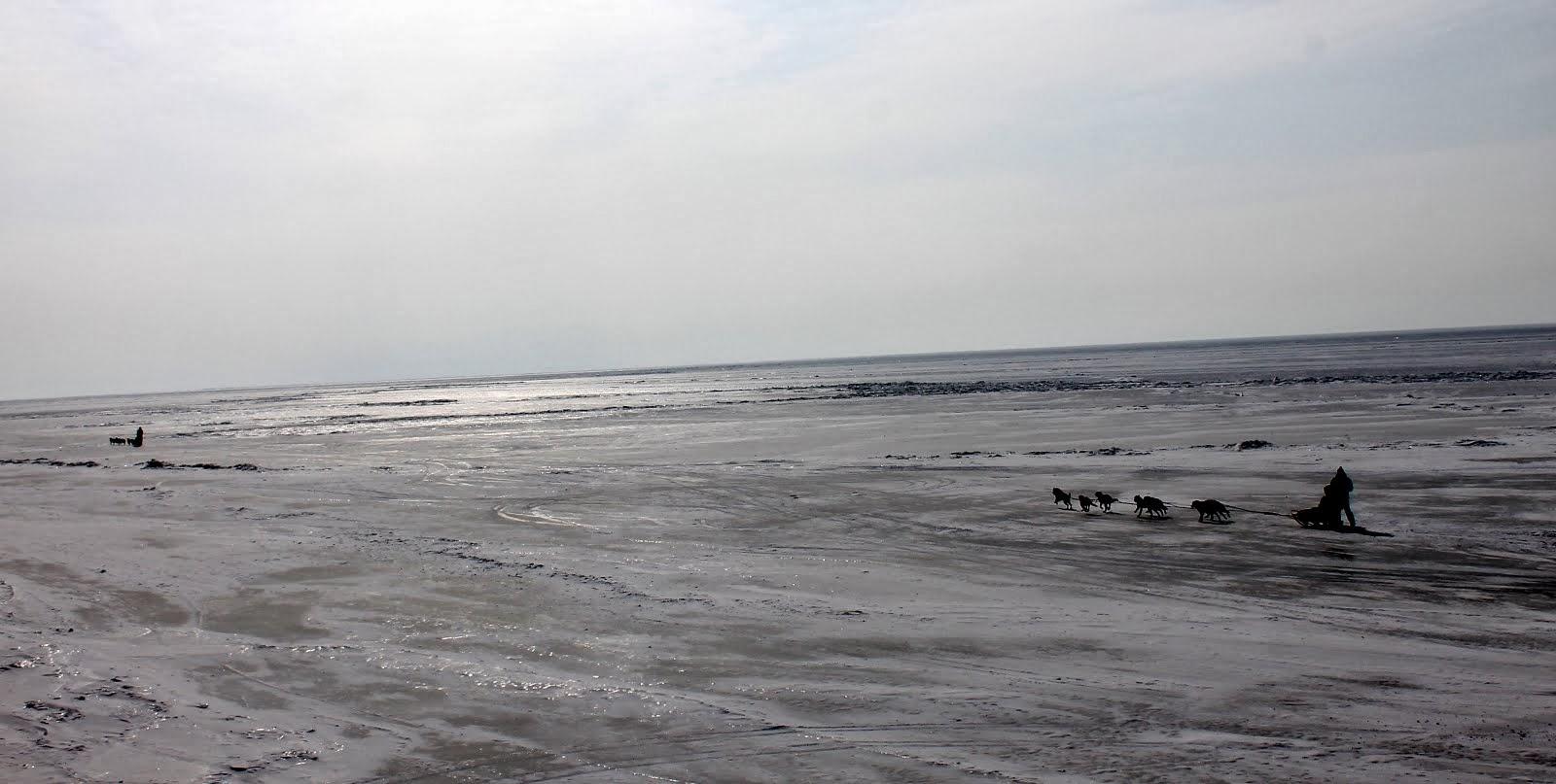 пересечение Байкала на упряжках