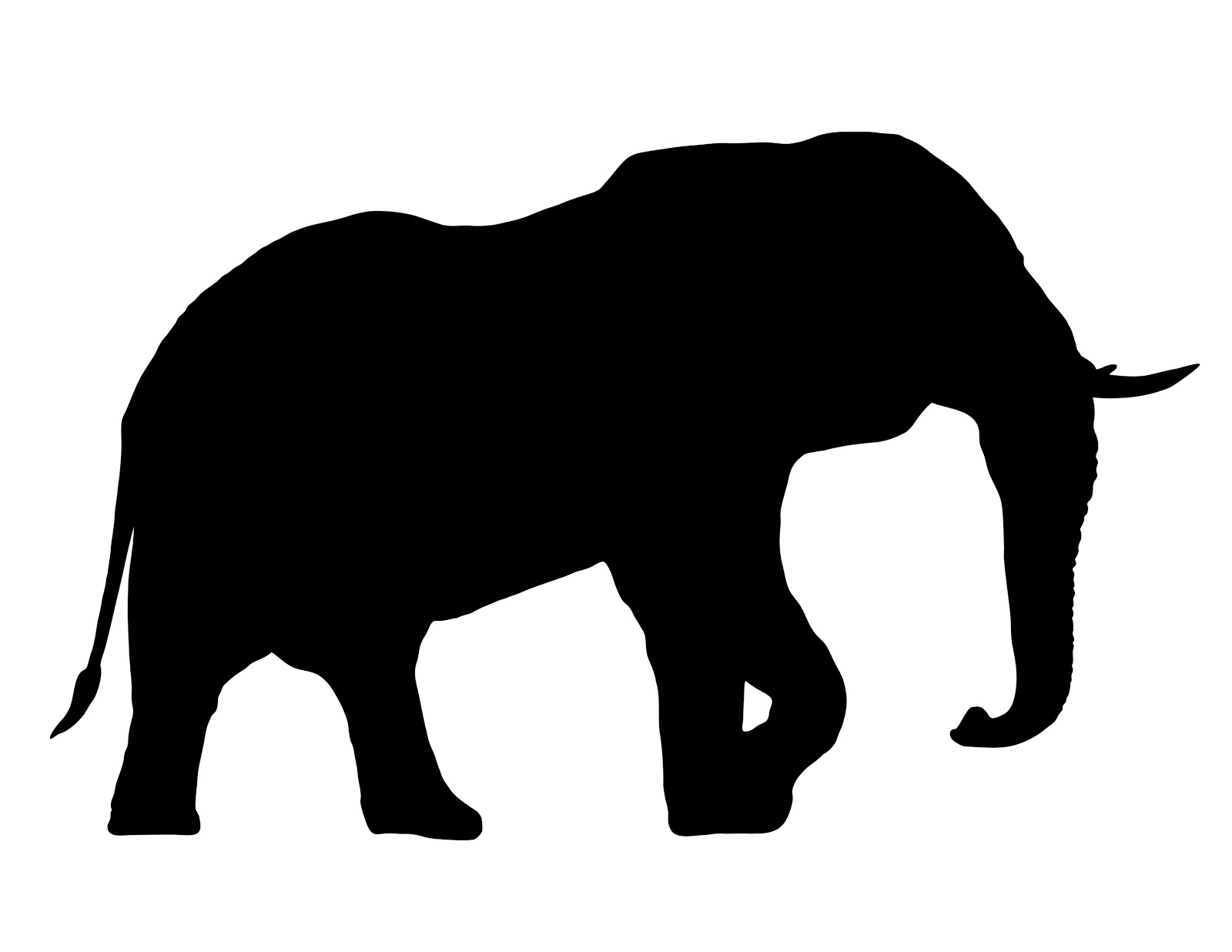 Elephant silhouette - photo#6