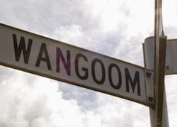 All About Wangoom
