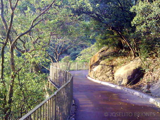 jogging path in bowen road, hong kong - photo by joselito briones